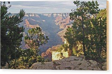 Grand Canyon No. 1 Wood Print by Sandy Taylor