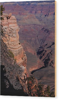 Grand Canyon 11 Wood Print by Donna Corless