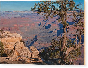 Grand Canyon 20 Wood Print by Donna Corless