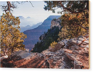 Grand Canyon 26 Wood Print by Donna Corless