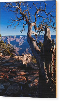 Grand Canyon 27 Wood Print by Donna Corless