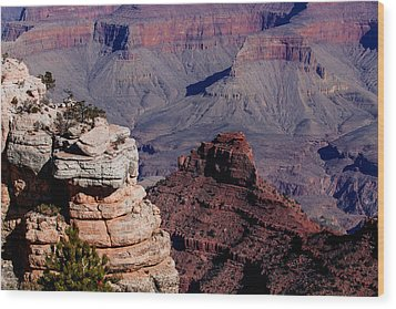Grand Canyon 3 Wood Print by Donna Corless