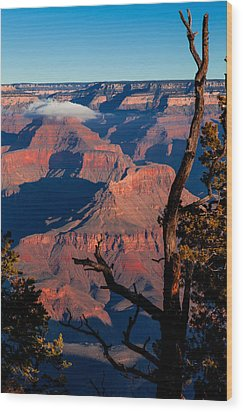 Grand Canyon 30 Wood Print by Donna Corless