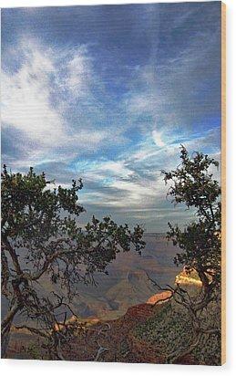 Grand Canyon No. 4 Wood Print by Sandy Taylor
