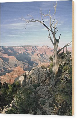 Wood Print featuring the photograph Grand Canyon 5 by John Norman Stewart