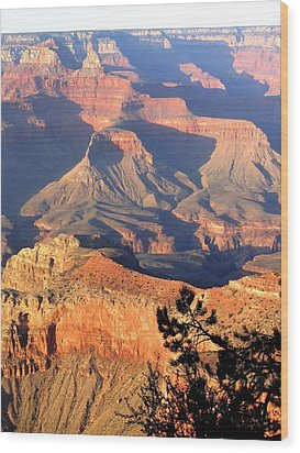 Grand Canyon 50 Wood Print by Will Borden