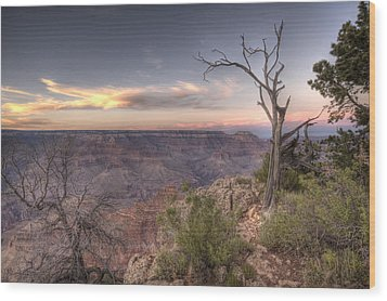 Grand Canyon 991 Wood Print