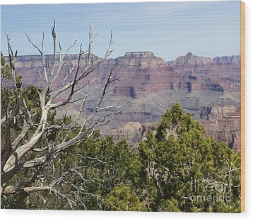 Grand Canyon National Park South Rim Wood Print by Patricia E Sundik