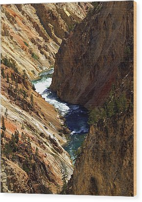 Grand Canyon Of The Yellowstone 1 Wood Print by Marty Koch