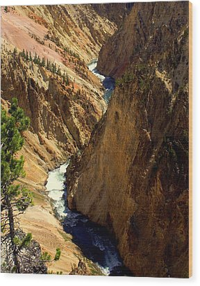 Grand Canyon Of The Yellowstone 2 Wood Print by Marty Koch