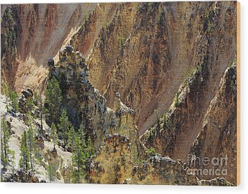 Grand Canyon Of The Yellowstone From North Rim Drive Wood Print by Louise Heusinkveld