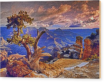Grand Canyon Pine Wood Print by Dennis Cox WorldViews