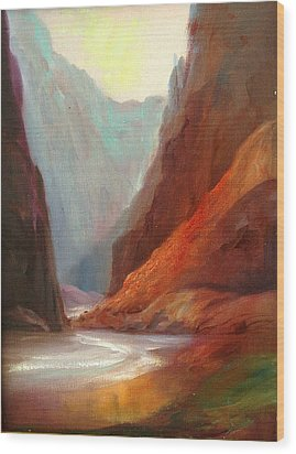 Grand Canyon Rafting Wood Print by Sally Seago