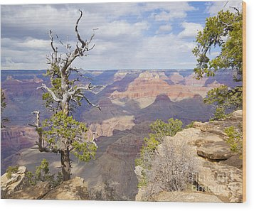 Wood Print featuring the photograph Grand Canyon View by Chris Dutton