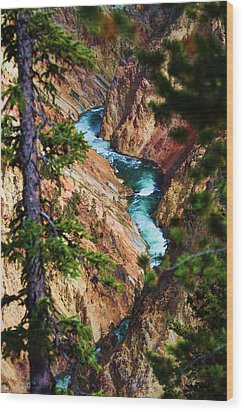 Grand Canyon  Yellowstone Wood Print by Russell  Barton