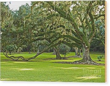 Grand Lady Wood Print by Scott Pellegrin