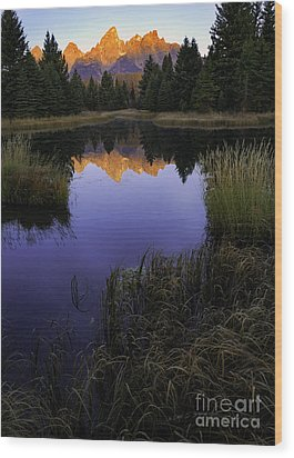 Grand Teton Morning Wood Print
