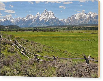 Grand Tetons With Buck And Pole Fence Wood Print