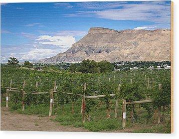 Grand Valley Vineyards Wood Print by Teri Virbickis