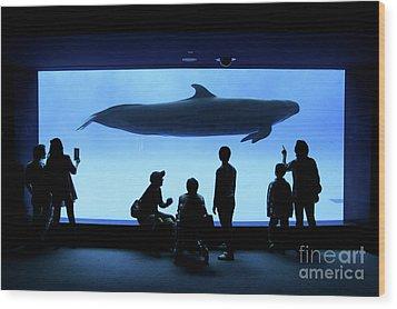 Wood Print featuring the photograph Grand Whale by Tatsuya Atarashi