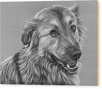 Granddog Kuper Wood Print