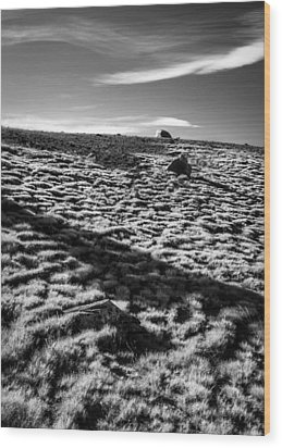 Wood Print featuring the photograph Granite Lakes Meadow by Alexander Kunz