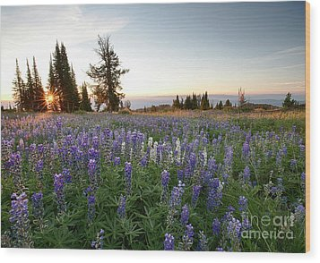 Granite Mountains Sunrise Wood Print by Idaho Scenic Images Linda Lantzy