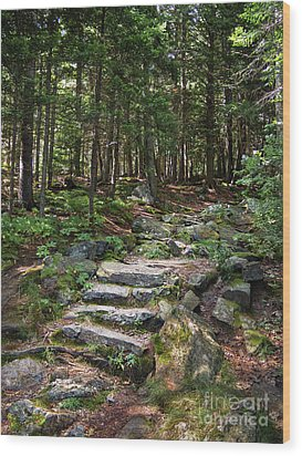Wood Print featuring the photograph Granite Steps, Camden Hills State Park, Camden, Maine -43933 by John Bald