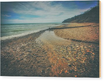 Grant Park - Lake Michigan Beach Wood Print by Jennifer Rondinelli Reilly - Fine Art Photography