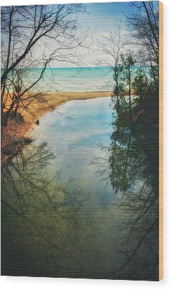 Grant Park - Lake Michigan Shoreline Wood Print by Jennifer Rondinelli Reilly - Fine Art Photography