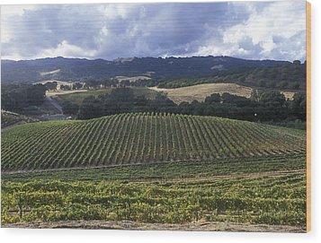 Grape Vines On Opolo Vineyards Wood Print by Rich Reid