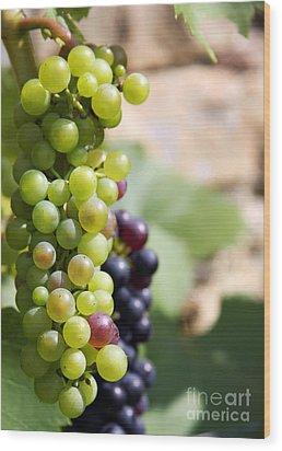 Grapes Wood Print by Jane Rix