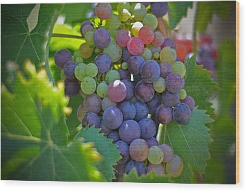 Grapes Wood Print by Kelly Wade