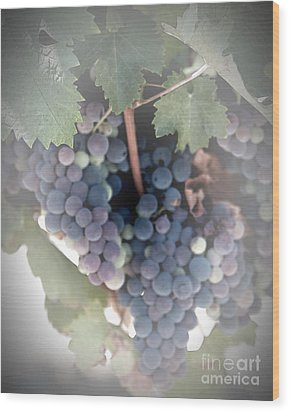 Grapes On The Vine I Wood Print by Sherry Hallemeier