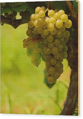 Grapes Wood Print by Travis Aston