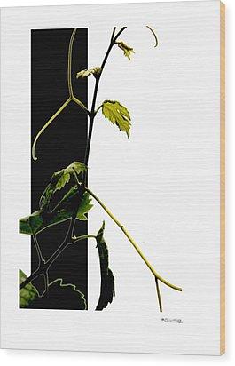Grapevine Collage Wood Print by Xoanxo Cespon