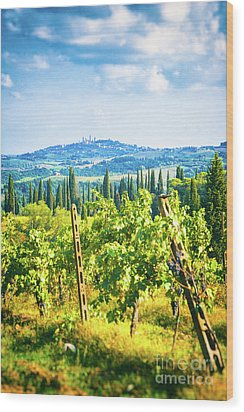 Wood Print featuring the photograph Grapevine In San Gimignano Tuscany by Silvia Ganora