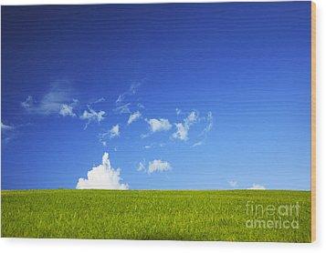 Grass Cloud Sky Wood Print by Brandon Tabiolo - Printscapes