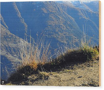 Grass In The Foreground, The Main Valley Of The Swiss Canton Of Valais In The Background Wood Print