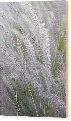 Wood Print featuring the photograph Grass Is More - Nature In Purple And Green by Ben and Raisa Gertsberg