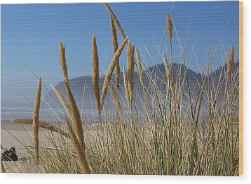 Wood Print featuring the photograph Grass Seeds On The Beach by Angi Parks