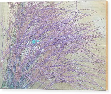 Wood Print featuring the photograph Grasses Toward The Sun by Lenore Senior