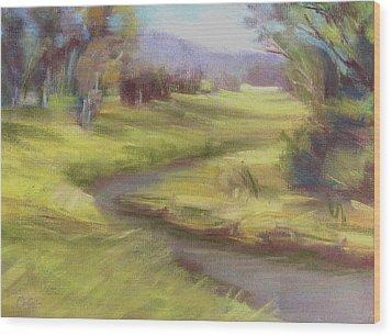 Grassy Meadow Wood Print by Patricia Seitz