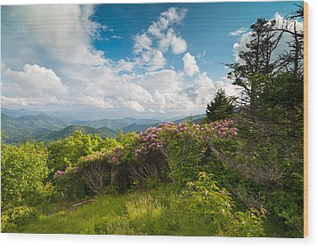 Grassy Ridge Roan Highlands Rhododendrons On The Appalachian Trail Wood Print by Rick Dunnuck
