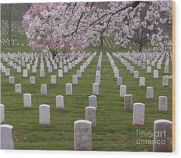 Graves Of Heros In Arlington National Cemetery Wood Print by Tim Grams