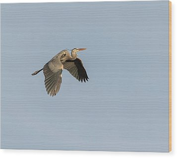 Wood Print featuring the photograph Great Blue Heron 2015-15 by Thomas Young