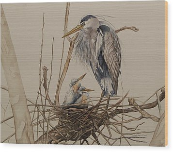 Great Blue Heron And Chicks Wood Print by Laurie Tietjen