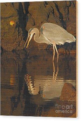 Great Blue Heron Wood Print by Debbie Stahre