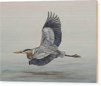 Great Blue Heron Flying Wood Print by Laurie Tietjen