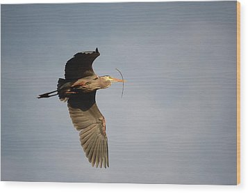 Wood Print featuring the photograph Great Blue Heron In Flight by Ann Bridges